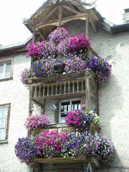 Nhà có ban công nhỏ nhưng vẫn rực rỡ hoa lá