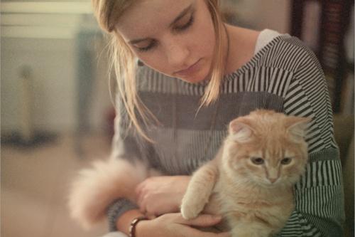 Chúng ta cũng có những ngày 'lười như mèo'