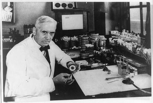 Cha đẻ của thuốc kháng sinh thay đổi nền y học nhờ đãng trí