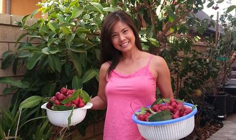 Hình ảnh sao Việt làm chủ vườn chăm chỉ ở Mỹ