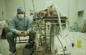 Câu chuyện đằng sau bức ảnh y tế rúng động thế giới