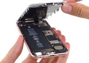 iPhone 7 có pin lớn hơn iPhone 6s?