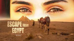 Tour 21 ngày du lịch Ai Cập, cưỡi lạc đà, khám phá Sahara đầy hấp dẫn