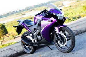 Honda CBR150 phiên bản Candy Violet