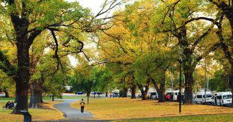 Bạn sẽ say đắm mùa Thu tuyệt đẹp ở Melbourne