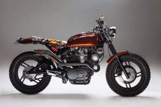 Hình ảnh Yamaha Virago 750 độ Scrambler đậm chất Nam Mỹ
