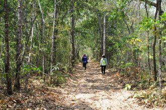 24h khám phá rừng Bưng Thị hoang sơ ở Bình Thuận thích thú