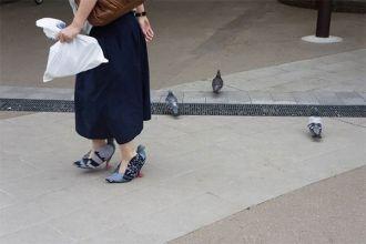 Giày cao gót được làm giống chim bồ câu lạ lẫm