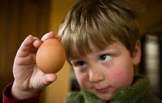 Trẻ em ăn bao nhiêu trứng là tốt cho sức khỏe