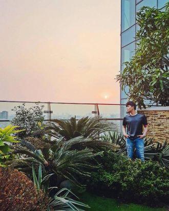 Nathan Lee còn khéo chăm được cả khu vườn trên không tuyệt đẹp