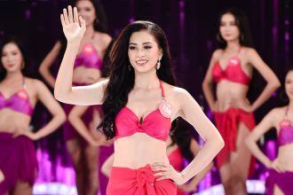 Hành trình trở thành Hoa hậu Việt Nam của Trần Tiểu Vy