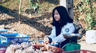 Cô bé bán óc chó ở Hà Giang siêu dễ thương